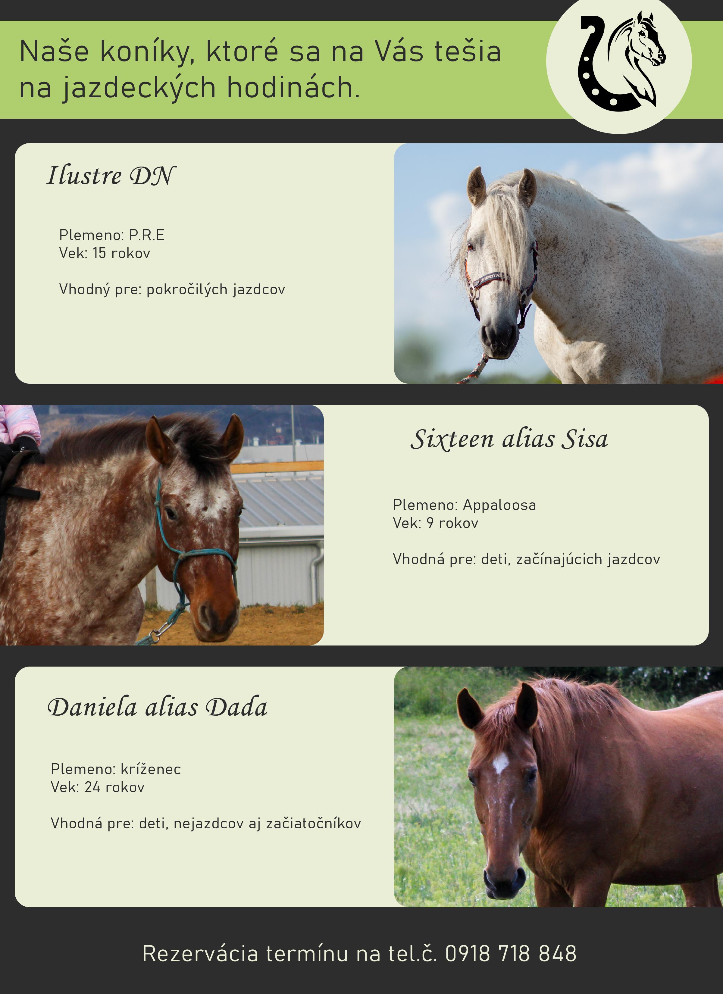 jazdecka_zoznam_koni