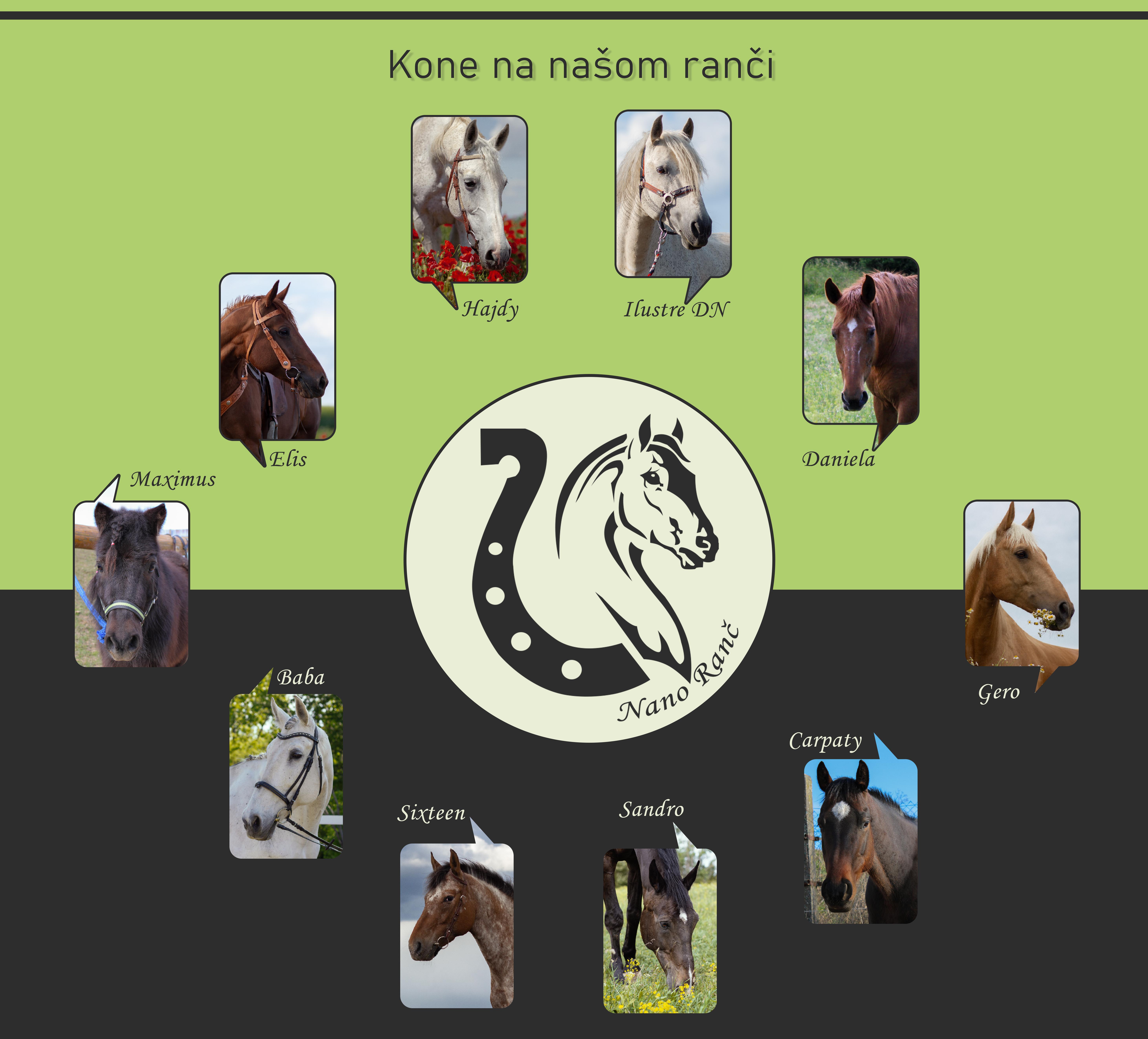 kone_na_ranči2